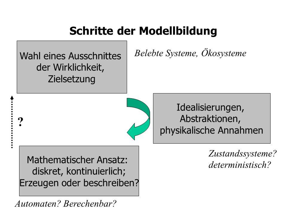 Schritte der Modellbildung