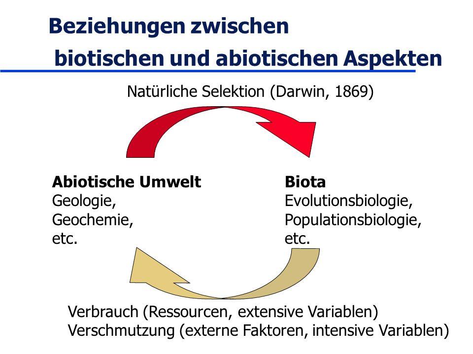 Beziehungen zwischen biotischen und abiotischen Aspekten