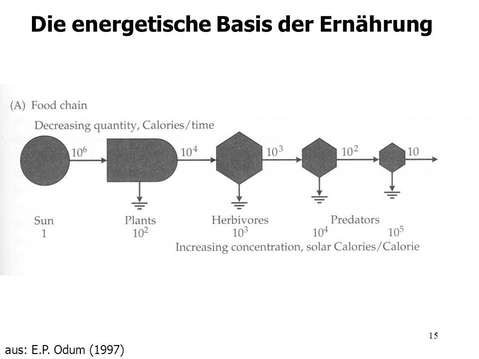 Die energetische Basis der Ernährung