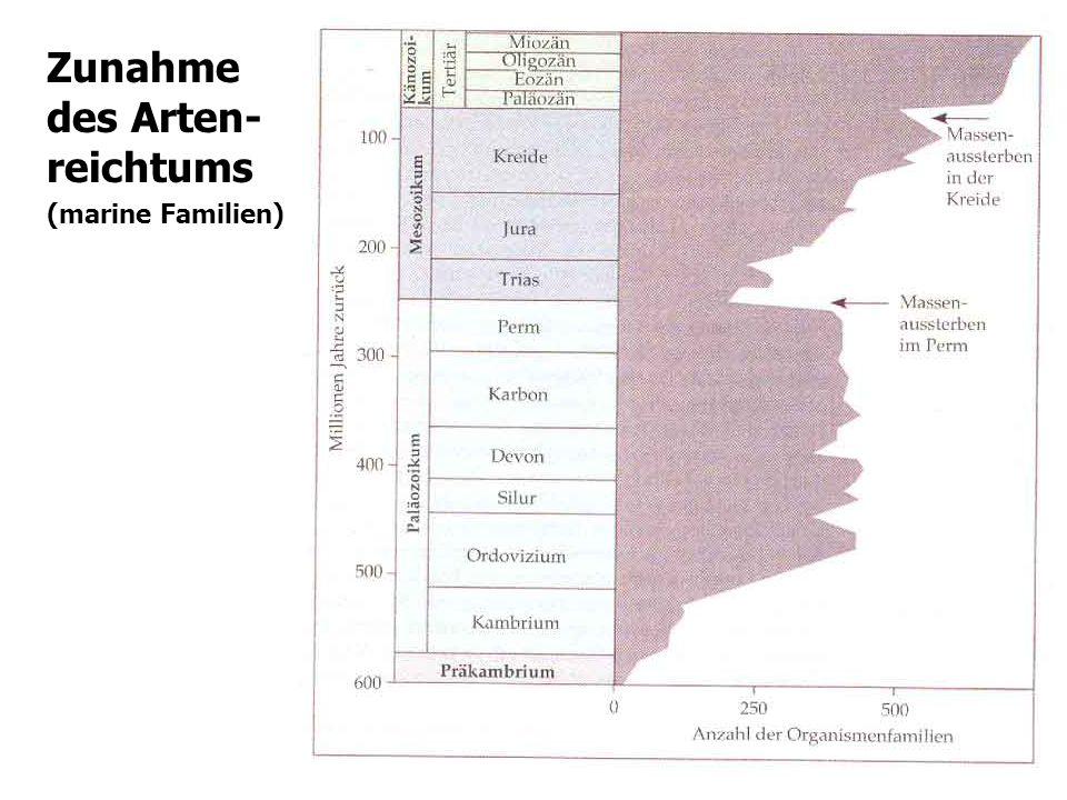 Zunahme des Arten-reichtums