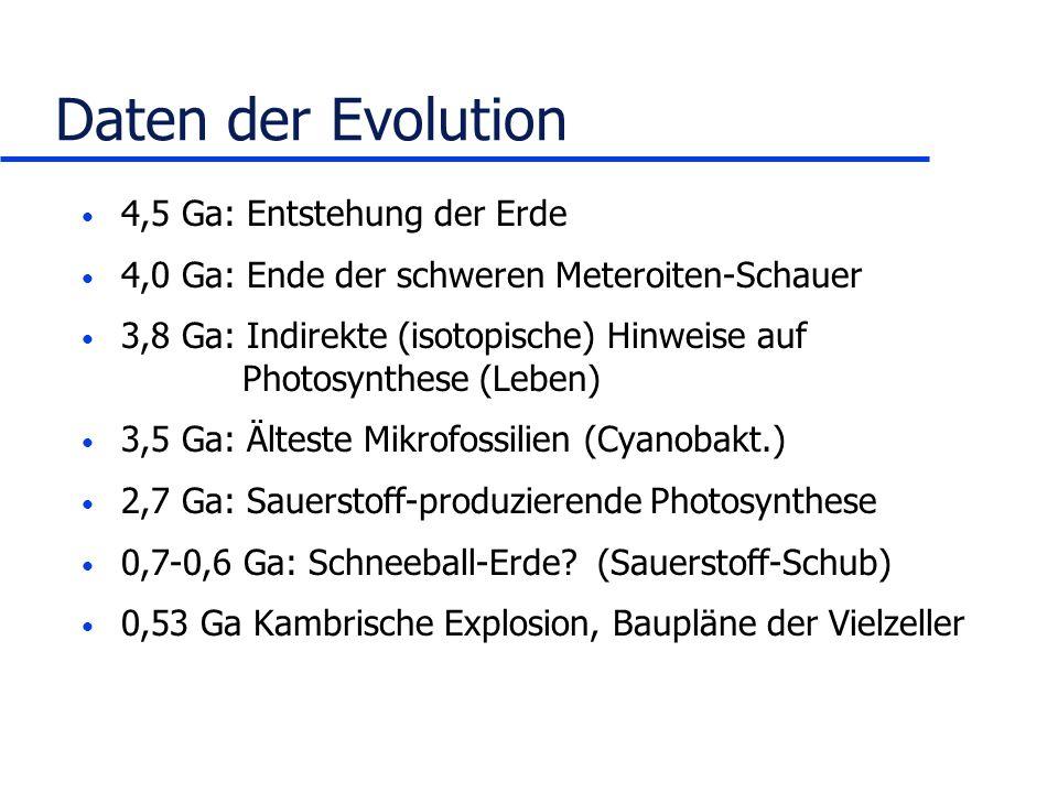Daten der Evolution 4,5 Ga: Entstehung der Erde