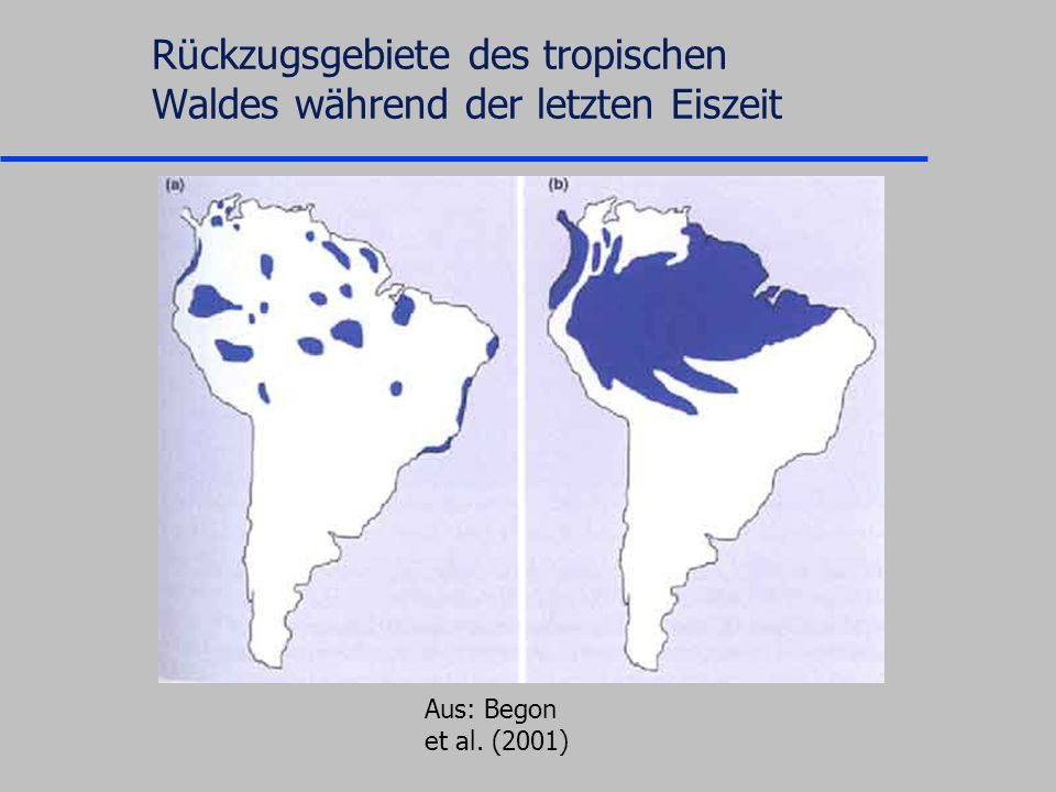 Rückzugsgebiete des tropischen Waldes während der letzten Eiszeit