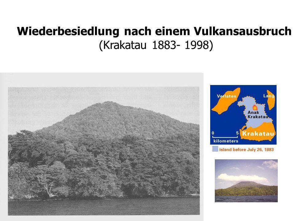 Wiederbesiedlung nach einem Vulkansausbruch (Krakatau 1883- 1998)