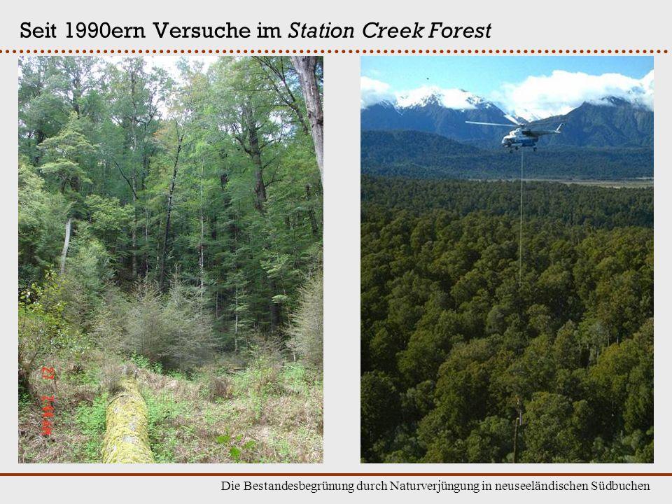 Seit 1990ern Versuche im Station Creek Forest