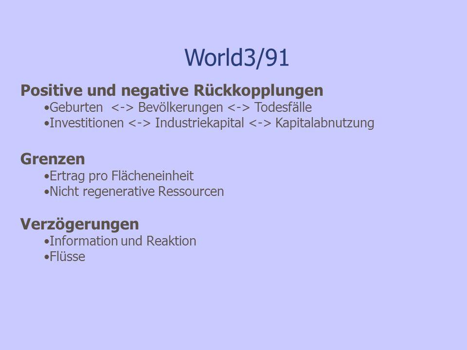 World3/91 Positive und negative Rückkopplungen Grenzen Verzögerungen