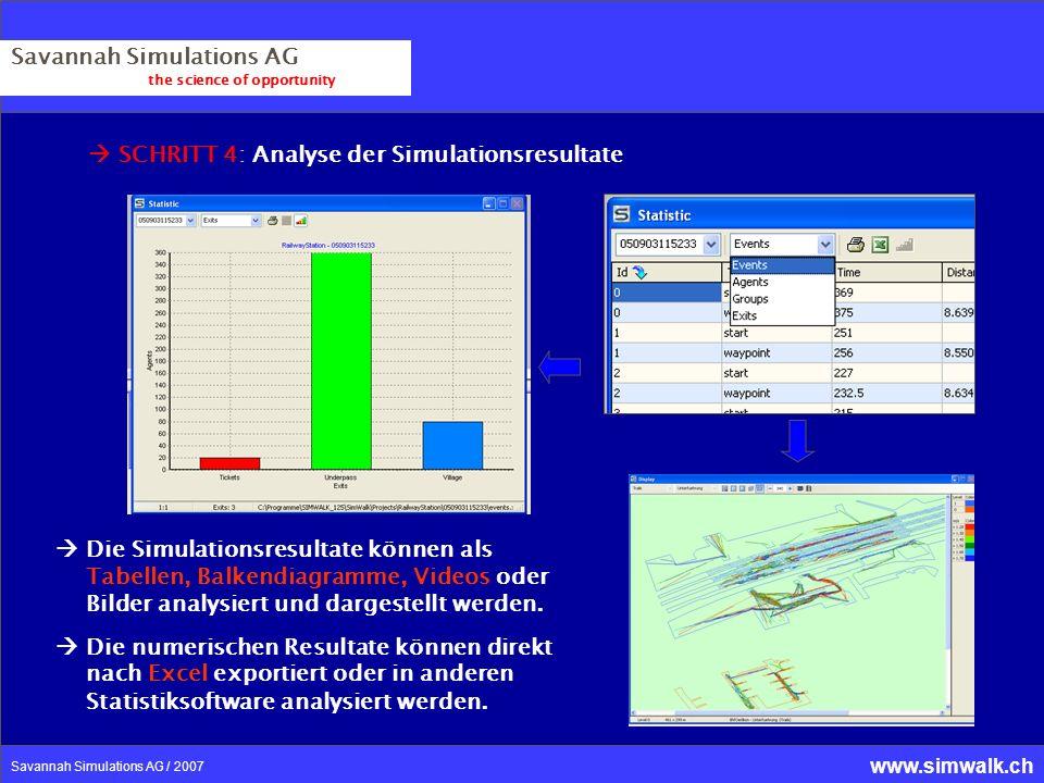 Savannah Simulations AG