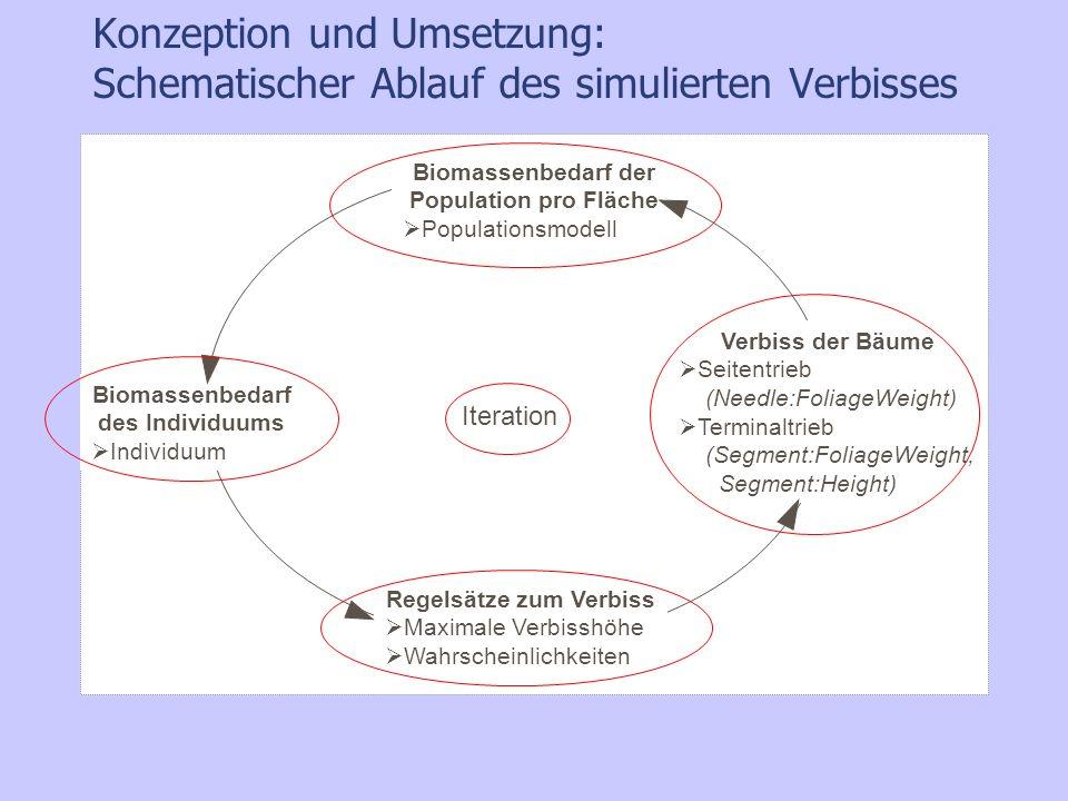 Konzeption und Umsetzung: Schematischer Ablauf des simulierten Verbisses