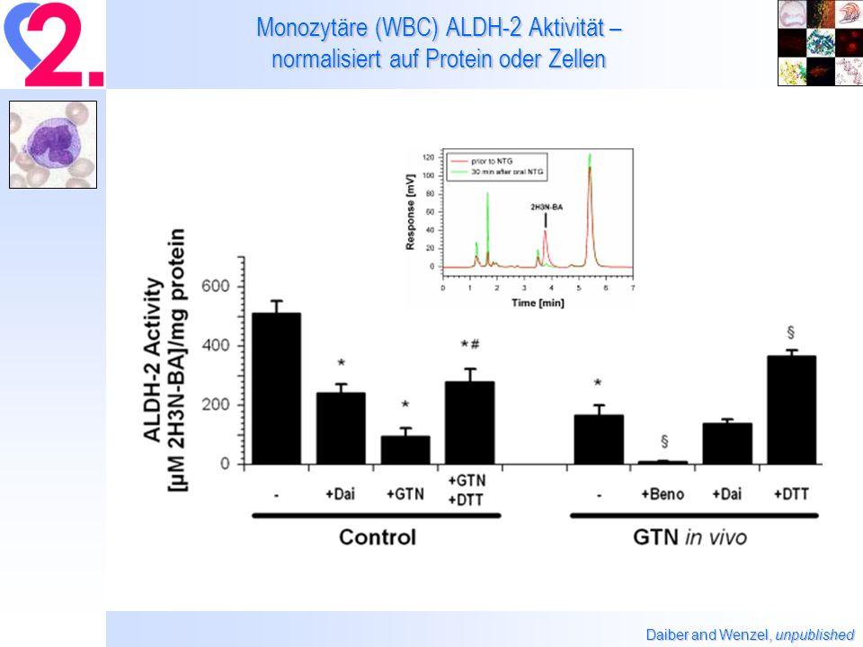 Monozytäre (WBC) ALDH-2 Aktivität – normalisiert auf Protein oder Zellen