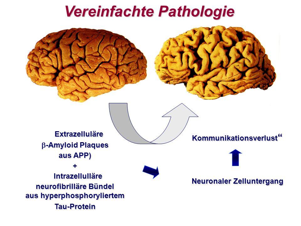 Vereinfachte Pathologie