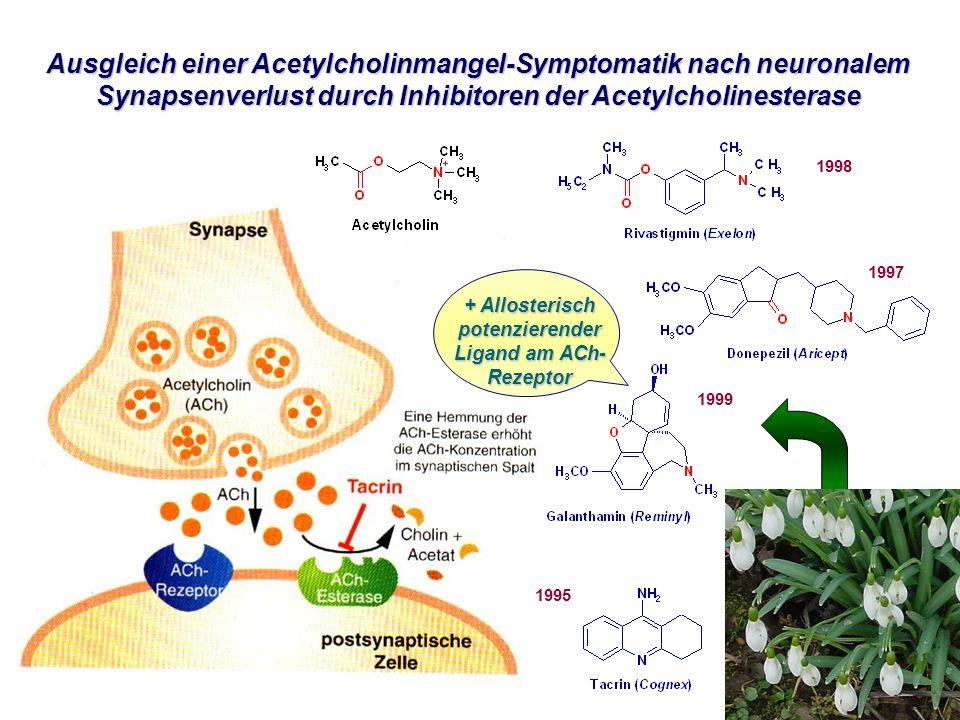 + Allosterisch potenzierender Ligand am ACh-Rezeptor