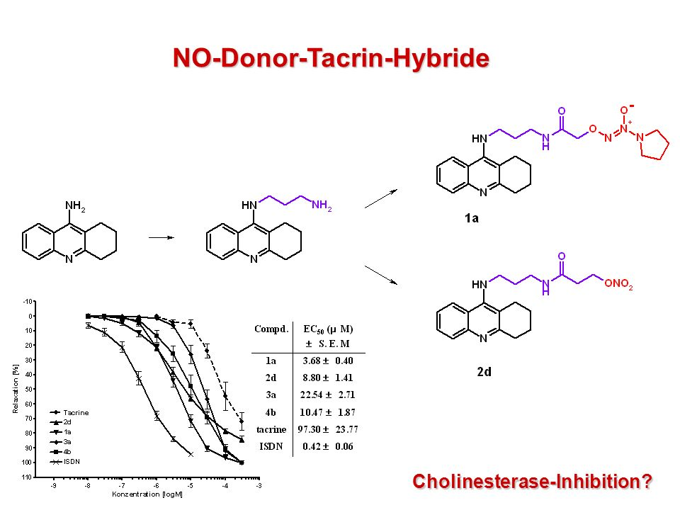 NO-Donor-Tacrin-Hybride Cholinesterase-Inhibition