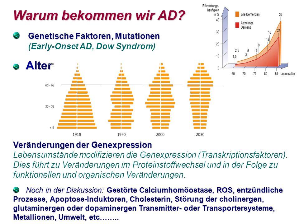 Warum bekommen wir AD Genetische Faktoren, Mutationen (Early-Onset AD, Dow Syndrom)