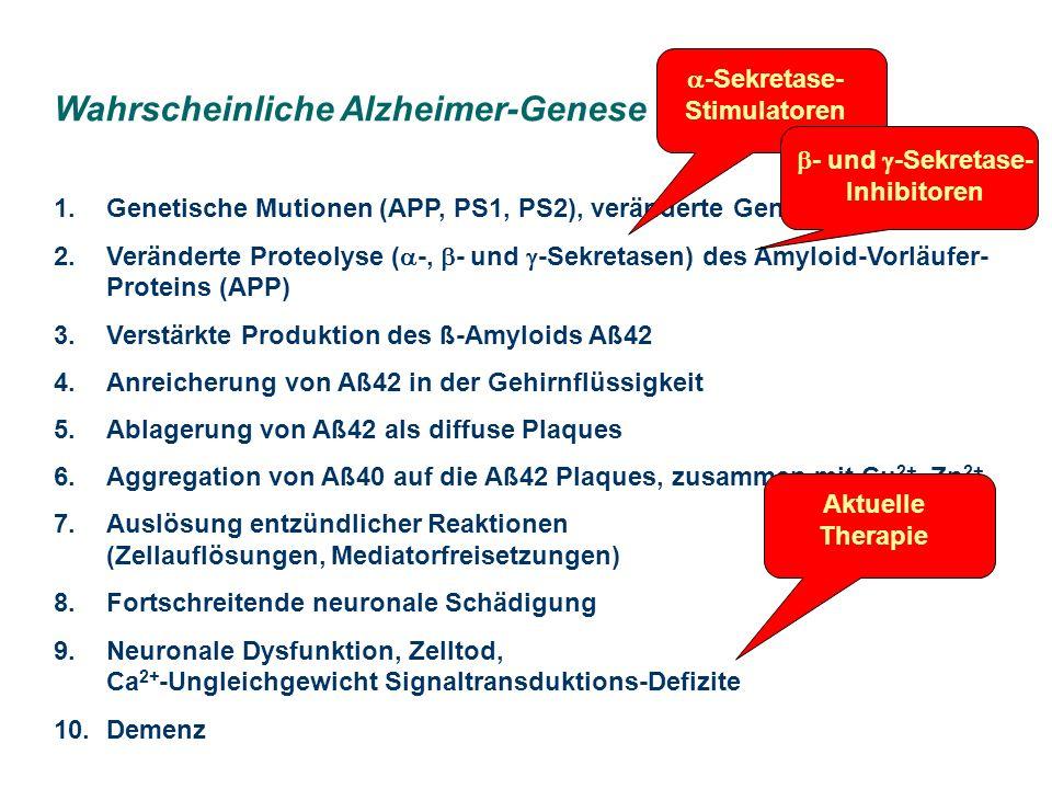 -Sekretase-Stimulatoren - und -Sekretase-Inhibitoren