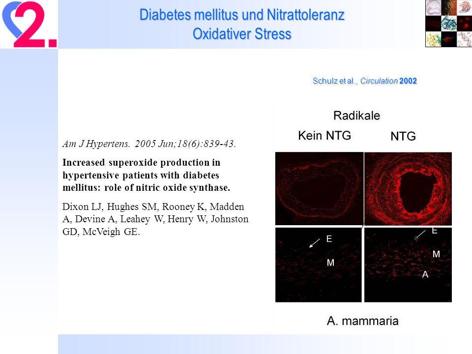 Diabetes mellitus und Nitrattoleranz Oxidativer Stress