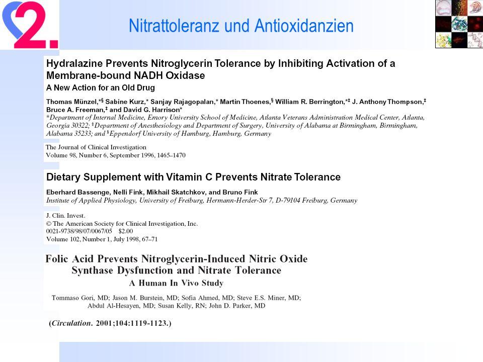Nitrattoleranz und Antioxidanzien