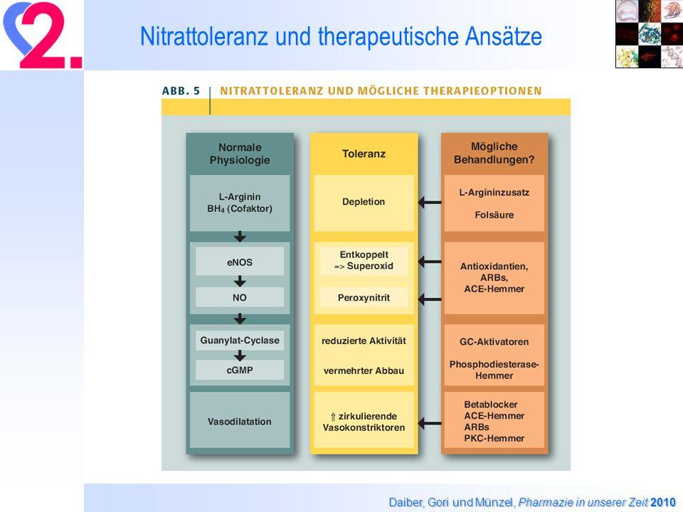 Nitrattoleranz und therapeutische Ansätze