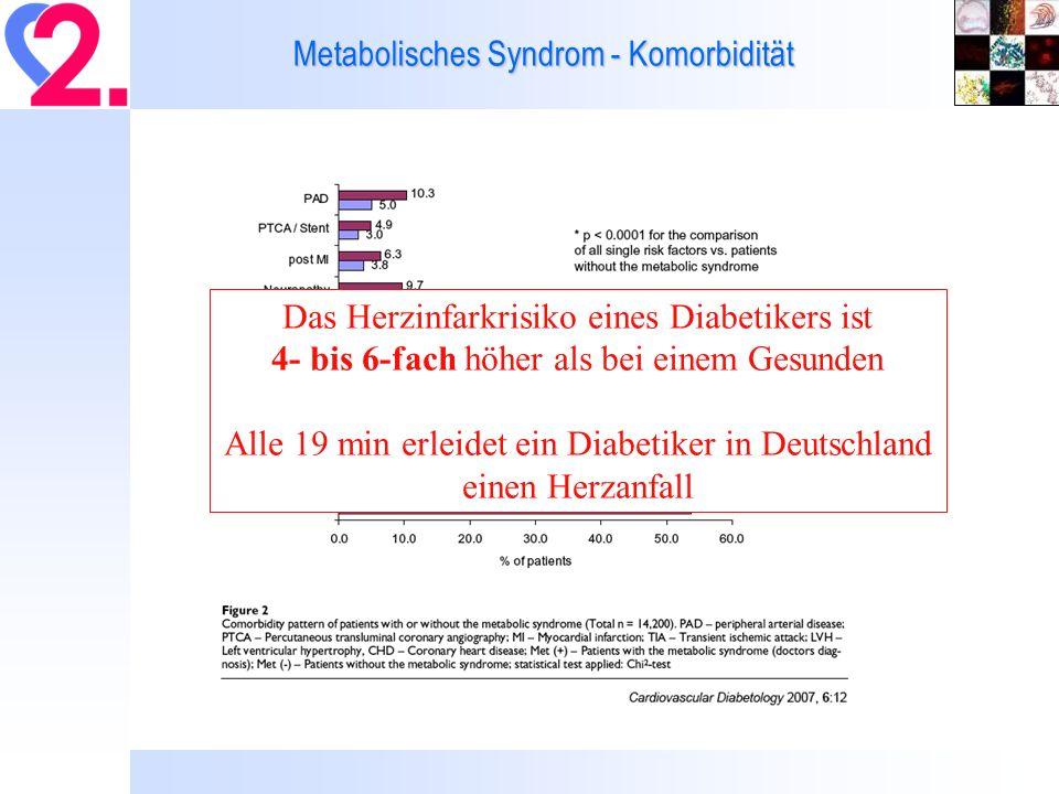 Metabolisches Syndrom - Komorbidität