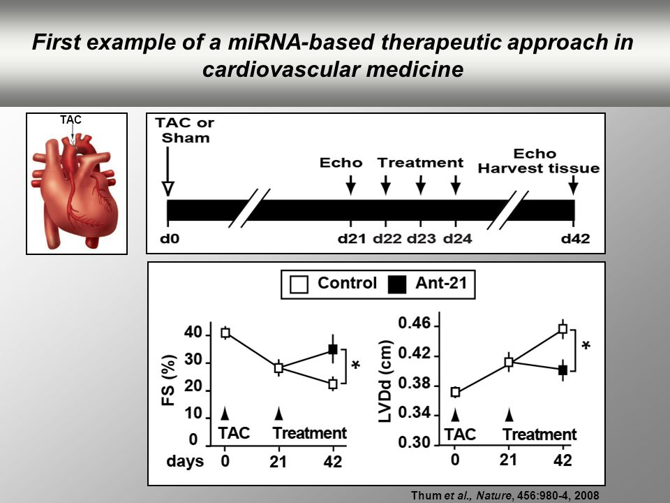 First example of a miRNA-based therapeutic approach in cardiovascular medicine