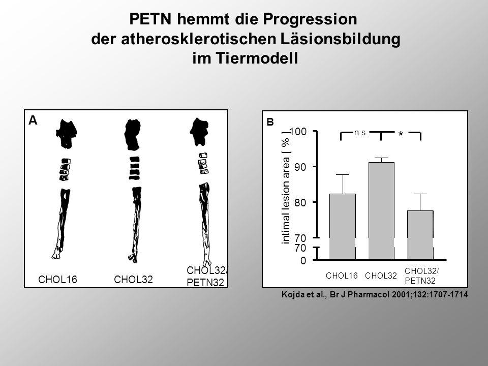 PETN hemmt die Progression der atherosklerotischen Läsionsbildung