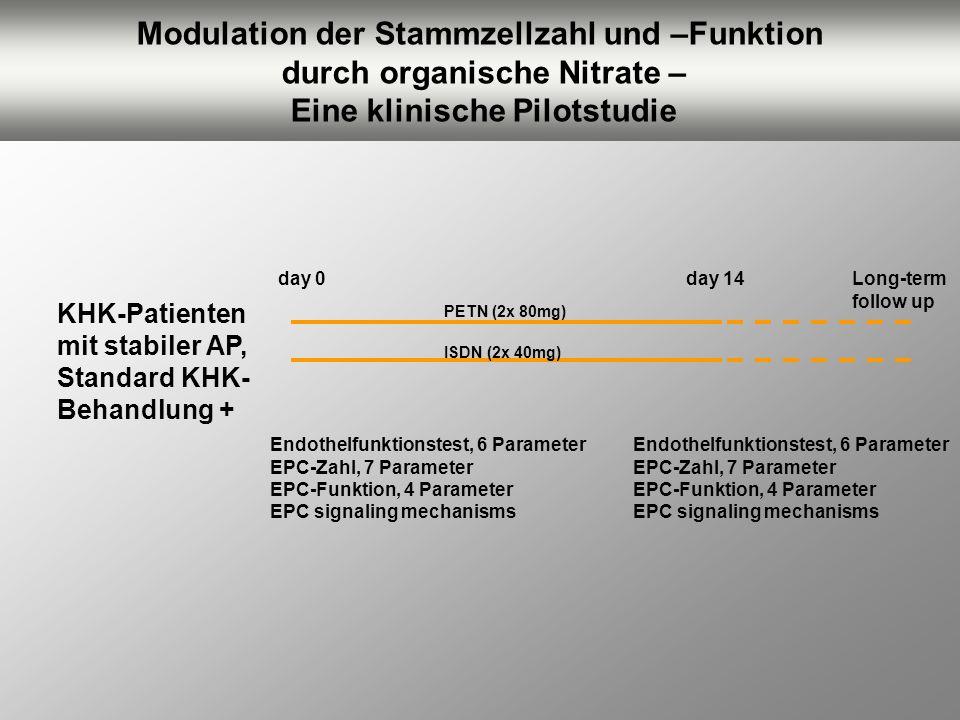 Modulation der Stammzellzahl und –Funktion