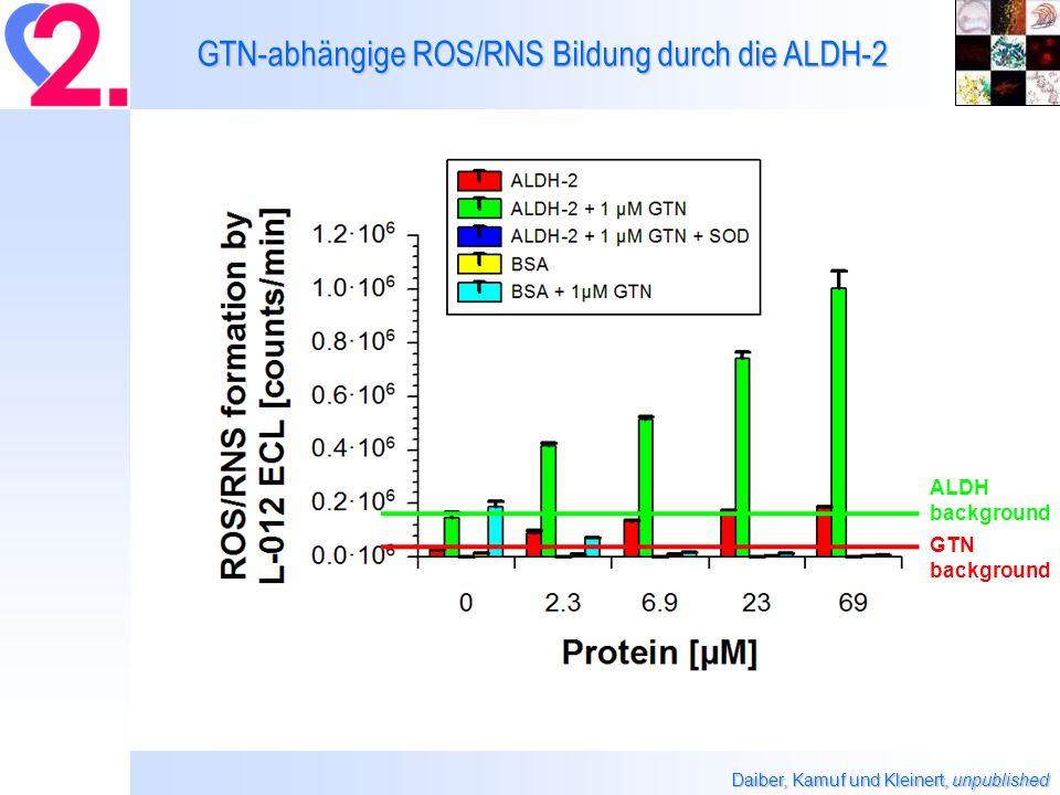 GTN-abhängige ROS/RNS Bildung durch die ALDH-2