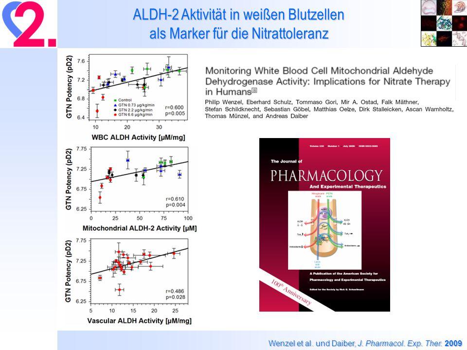 ALDH-2 Aktivität in weißen Blutzellen