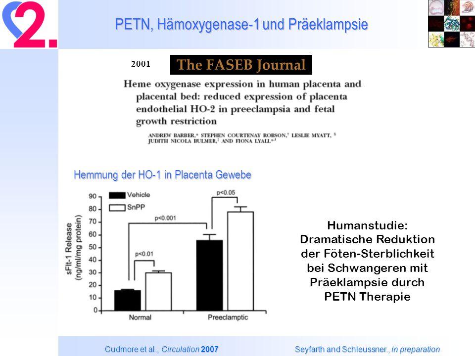 PETN, Hämoxygenase-1 und Präeklampsie