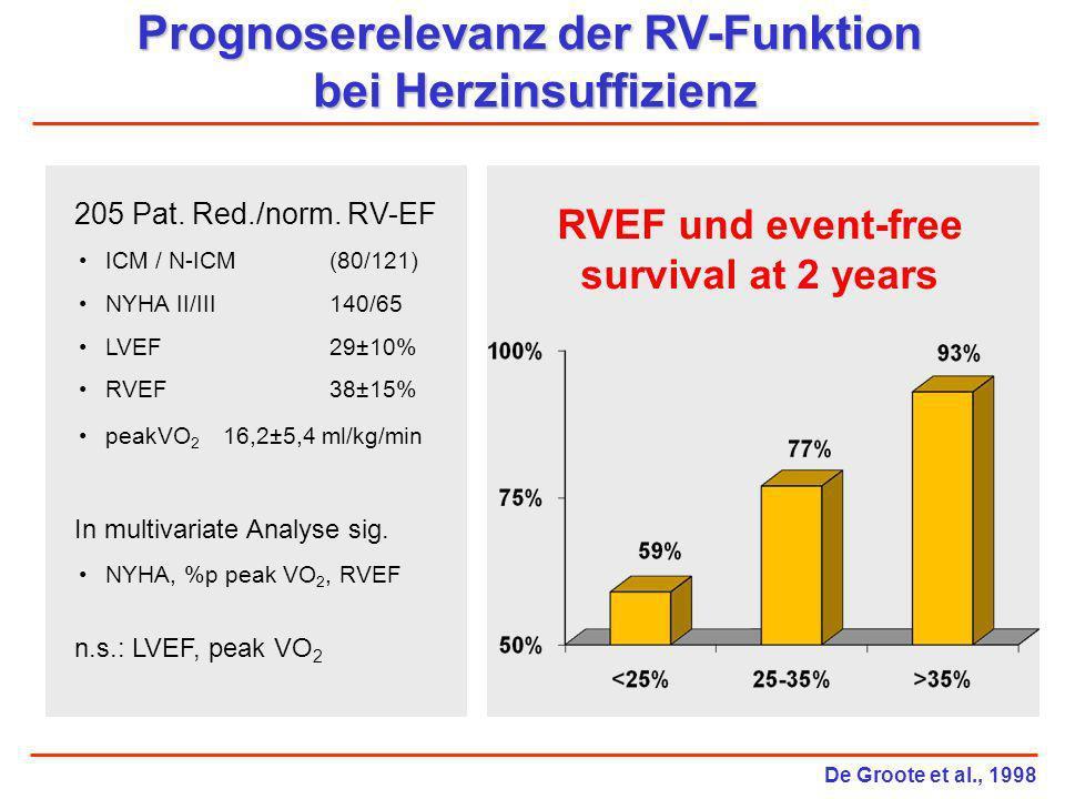 Prognoserelevanz der RV-Funktion