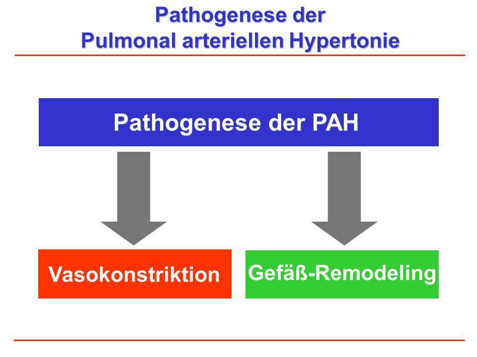 Pulmonal arteriellen Hypertonie