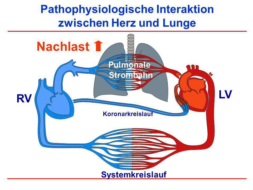 Pathophysiologische Interaktion zwischen Herz und Lunge