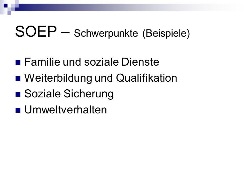 SOEP – Schwerpunkte (Beispiele)