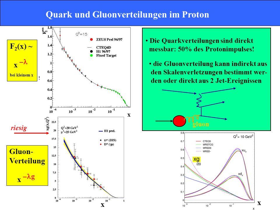 Quark und Gluonverteilungen im Proton