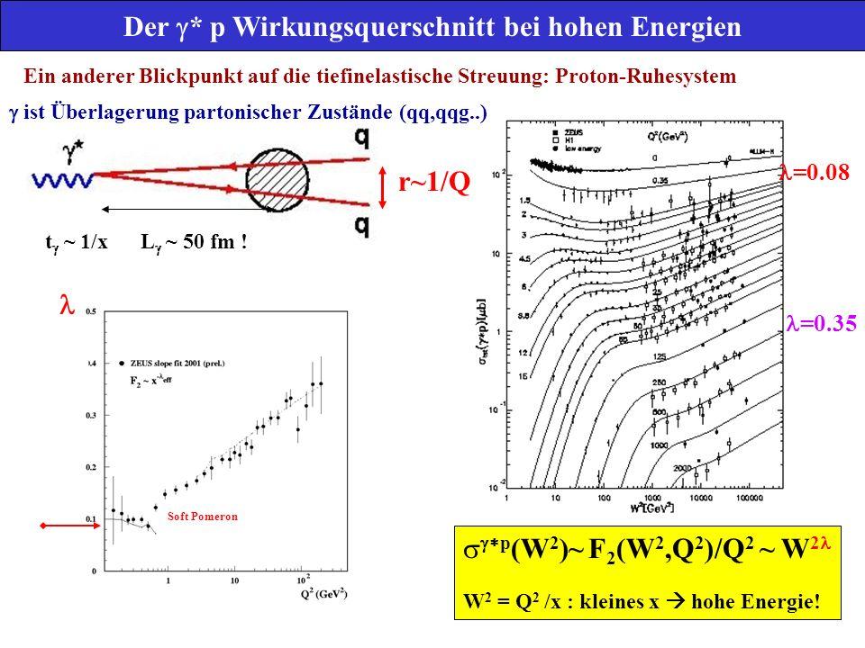 Der g* p Wirkungsquerschnitt bei hohen Energien