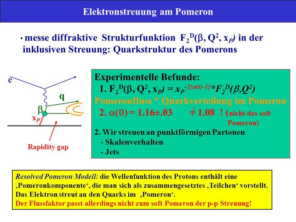 Elektronstreuung am Pomeron