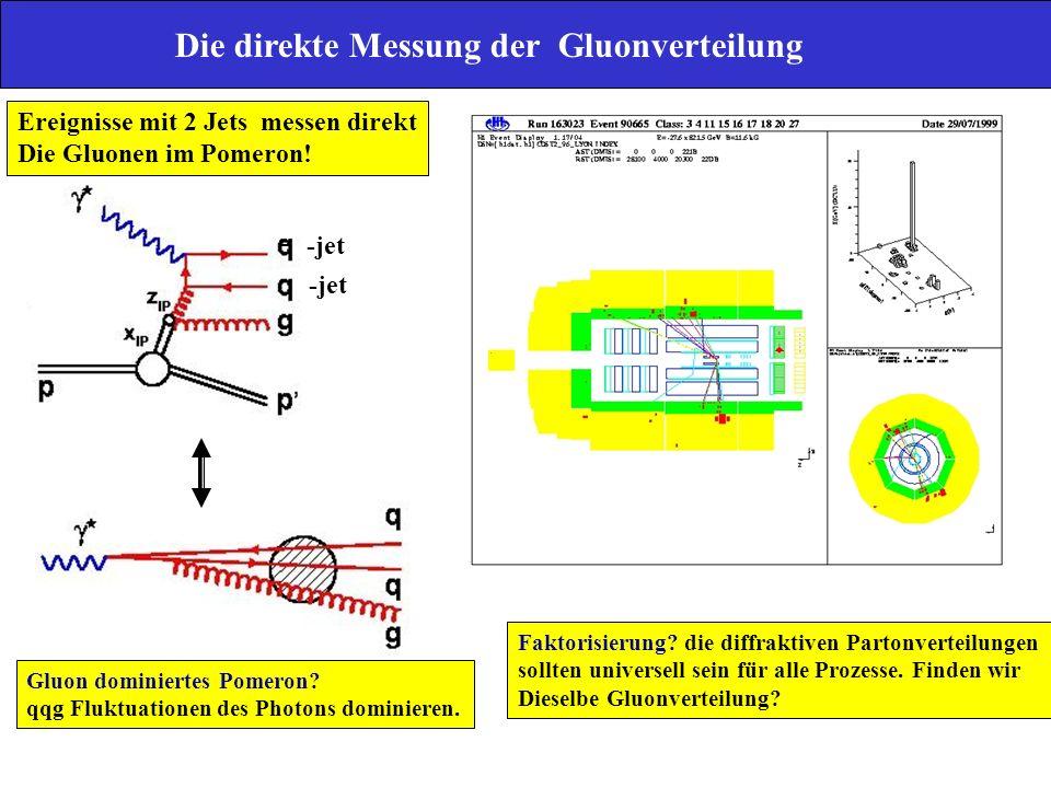 Die direkte Messung der Gluonverteilung