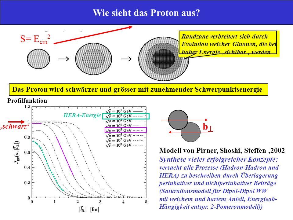 Wie sieht das Proton aus