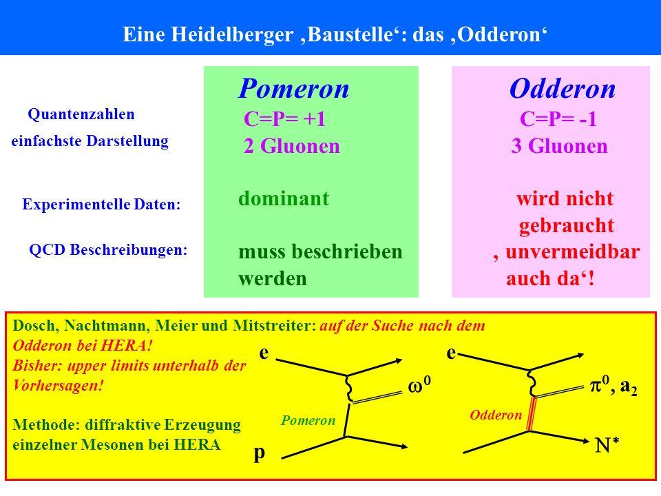 Pomeron Odderon Eine Heidelberger 'Baustelle': das 'Odderon'