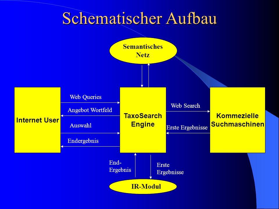 Schematischer Aufbau Semantisches Netz Internet User TaxoSearch Engine