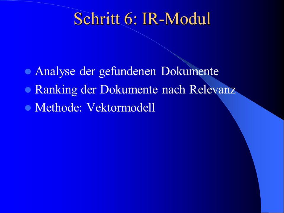 Schritt 6: IR-Modul Analyse der gefundenen Dokumente