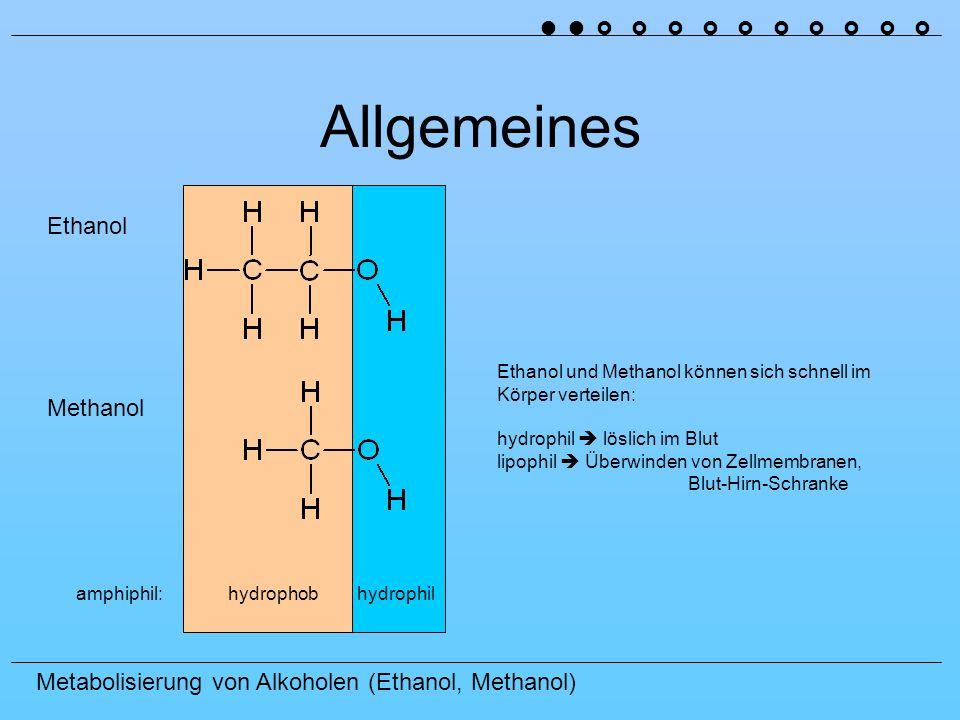 Allgemeines Ethanol Methanol ˜ ˜ › › › › › › › › › ›