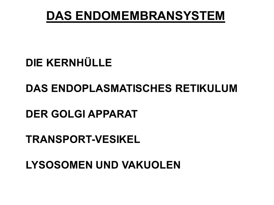 DAS ENDOMEMBRANSYSTEM