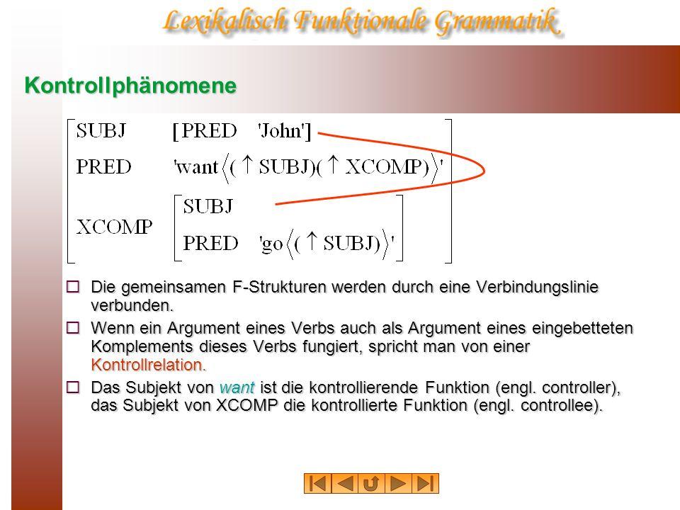 KontrollphänomeneDie gemeinsamen F-Strukturen werden durch eine Verbindungslinie verbunden.