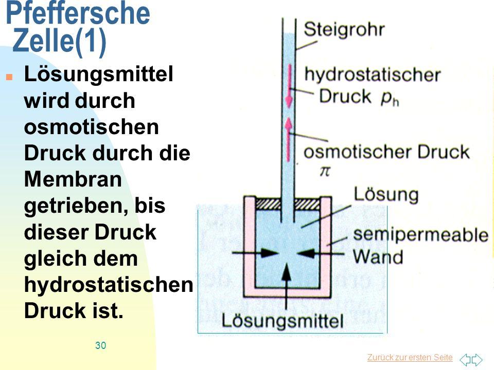 Pfeffersche Zelle(1)Lösungsmittel wird durch osmotischen Druck durch die Membran getrieben, bis dieser Druck gleich dem hydrostatischen Druck ist.