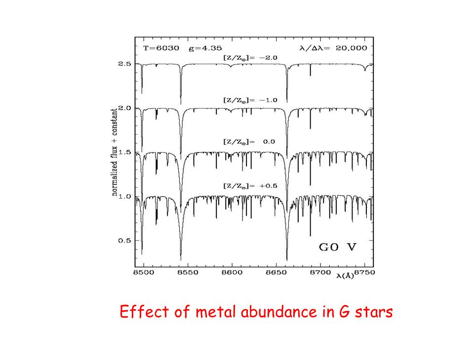 Effect of metal abundance in G stars