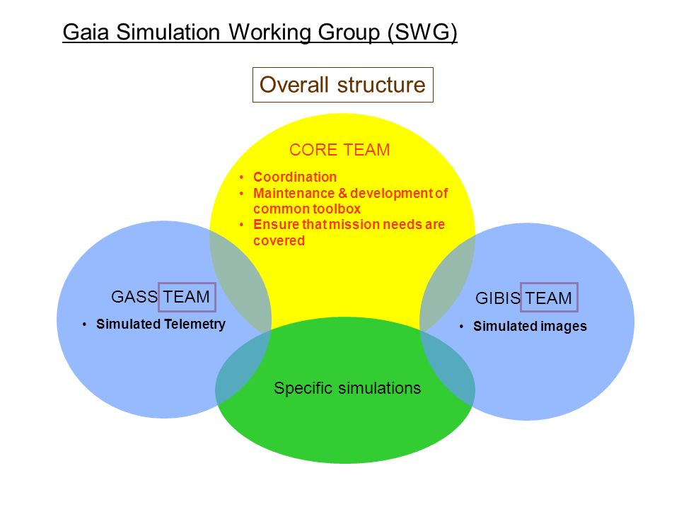 Gaia Simulation Working Group (SWG)