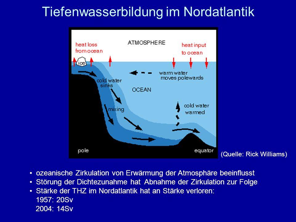 Tiefenwasserbildung im Nordatlantik