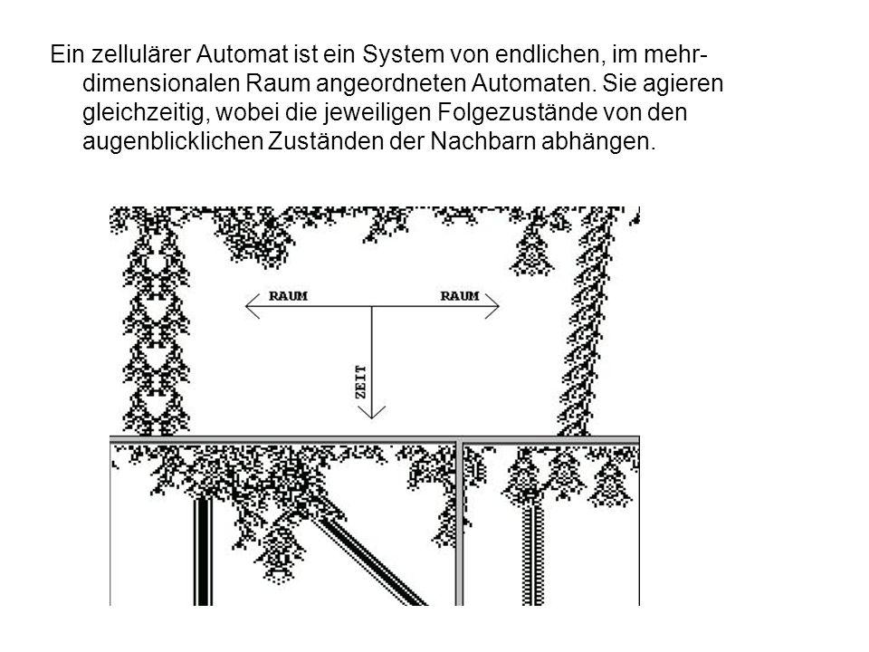 Ein zellulärer Automat ist ein System von endlichen, im mehr-dimensionalen Raum angeordneten Automaten.