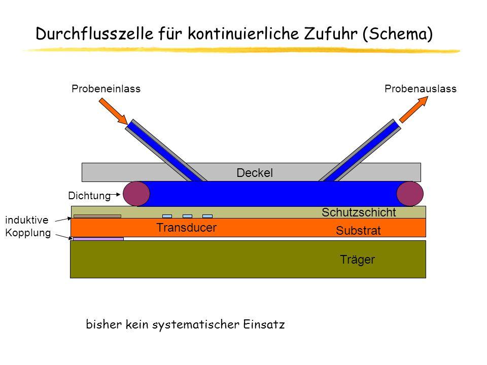 Durchflusszelle für kontinuierliche Zufuhr (Schema)
