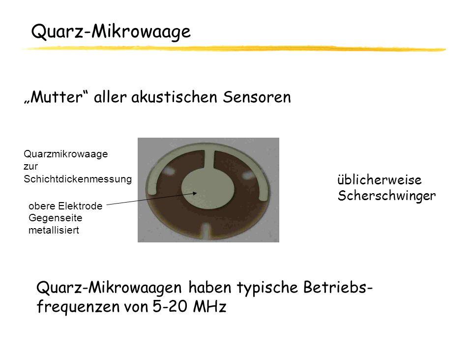 "Quarz-Mikrowaage ""Mutter aller akustischen Sensoren"