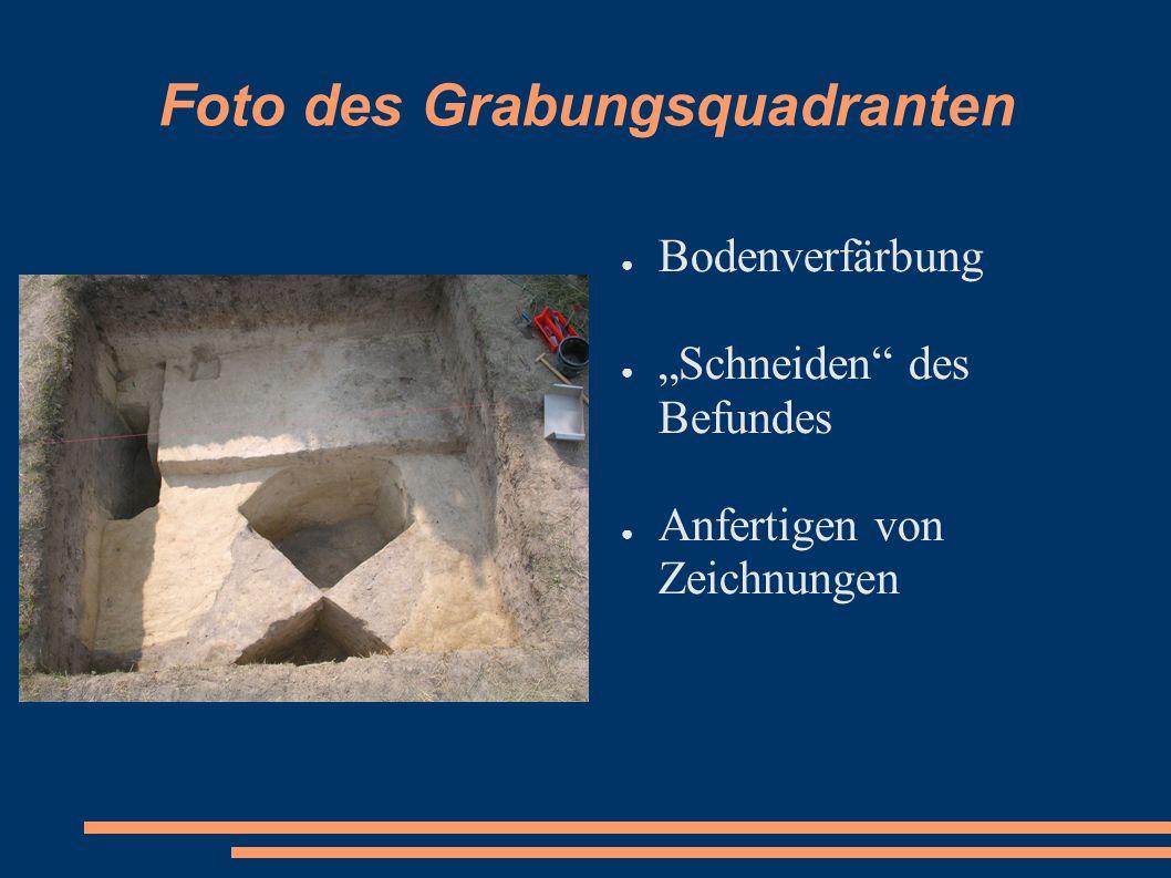 Foto des Grabungsquadranten